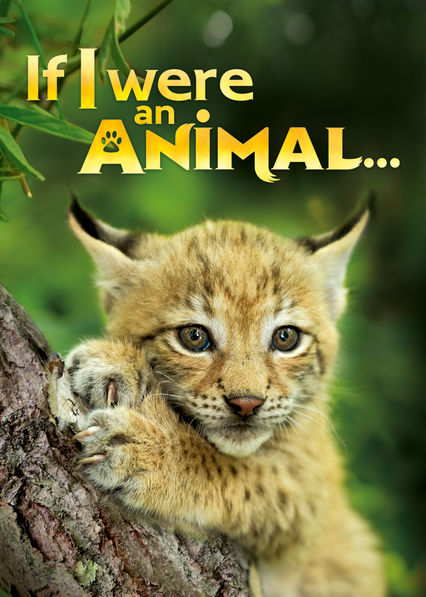 If I were an Animal on Netflix USA