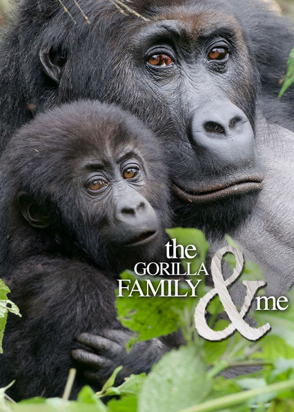 The Gorilla Family and Me