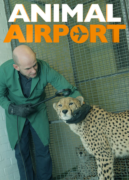 Animal Airport on Netflix USA
