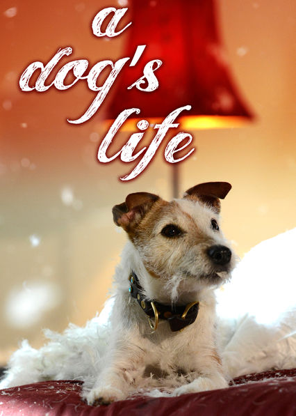 A Dog's Life on Netflix USA