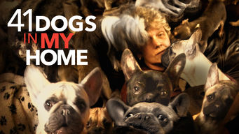 41 Dogs in My Home on Netflix USA