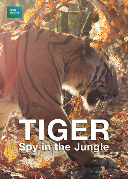 Tiger: Spy in the Jungle