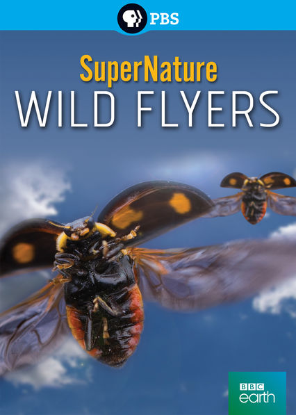 Is 'SuperNature: Wild Flyers' available to watch on ...