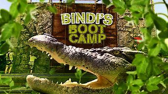 Bindi's Bootcamp (0)
