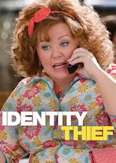 Search netflix Identity Thief